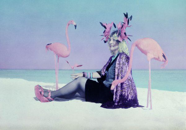 Flamigo-lady-of-miami-beach-14×20