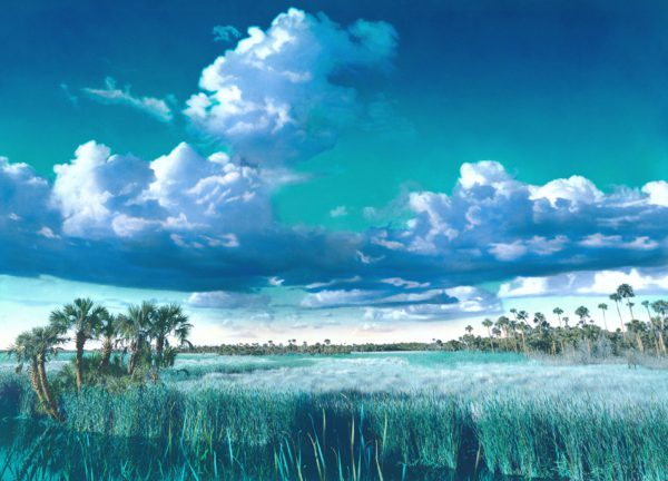 The-Blues-along-Tamiami-Trail–3×4