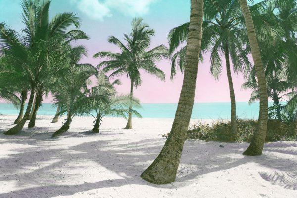 island-dreams-13×20