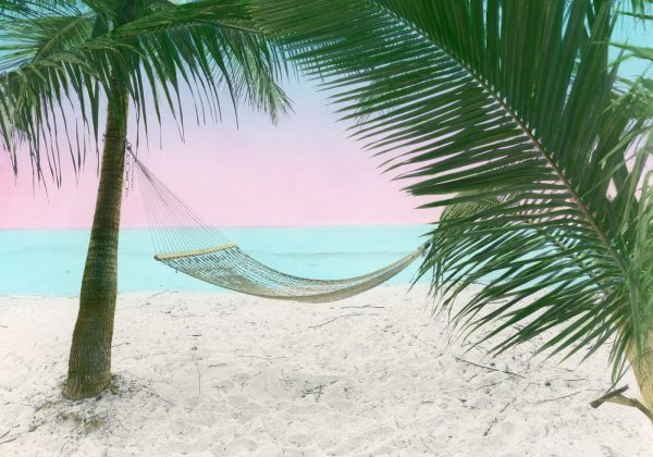 lazy-days-in-the-tropics-14×20
