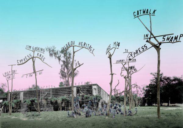 tom-gaskins-Cypress-Knee-Museum-14×20