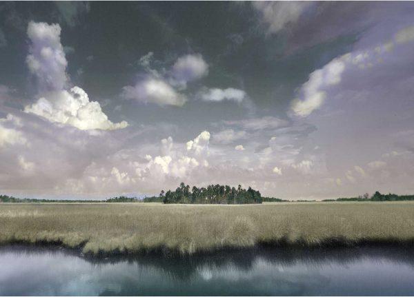 Ozello Marsh 3