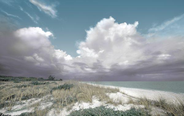 Sanibel Islalnd Beach web
