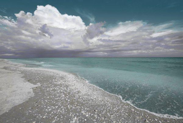 Sanibel-Island-Beach-2-web